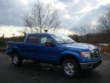 2010 Blue Flame Metallic Ford F150 XLT SuperCrew 4x4 #22294877