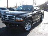 2004 Black Dodge Dakota Sport Quad Cab 4x4 #22591694