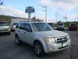 2009 Light Sage Metallic Ford Escape XLT #22551340