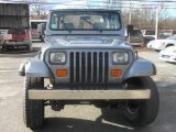 1993 Jeep Wrangler Dark Quartz Gray Metallic