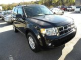 2009 Black Ford Escape XLT V6 #22556206