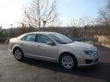 2010 Smokestone Metallic Ford Fusion SE #22551337