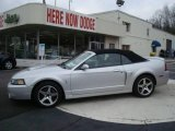 2003 Silver Metallic Ford Mustang Cobra Convertible #22771156