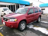 2006 Redfire Metallic Ford Escape Limited 4WD #22968794