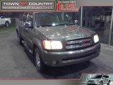 2005 Phantom Gray Pearl Toyota Tundra SR5 Double Cab #22988109
