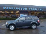 2009 Black Pearl Slate Metallic Ford Escape XLT V6 4WD #22985316
