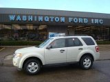 2009 Light Sage Metallic Ford Escape XLT V6 4WD #22985318