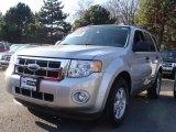 2009 Brilliant Silver Metallic Ford Escape XLT V6 4WD #22983425