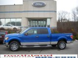 2010 Blue Flame Metallic Ford F150 XLT SuperCrew 4x4 #23075490