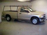 2004 Light Almond Pearl Dodge Ram 1500 ST Regular Cab #23184567