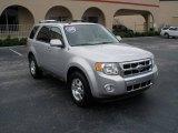 2009 Brilliant Silver Metallic Ford Escape Limited V6 #23178688