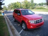 2009 Torch Red Ford Escape XLT 4WD #23351896