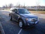 2009 Sterling Grey Metallic Ford Escape XLT V6 4WD #23351934