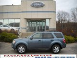 2010 Steel Blue Metallic Ford Escape XLT V6 4WD #23378201