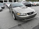 2001 Mineral Grey Metallic Ford Mustang GT Coupe #23452579