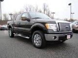 2010 Tuxedo Black Ford F150 XLT SuperCrew 4x4 #23448775