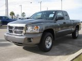 2010 Mineral Gray Metallic Dodge Dakota ST Extended Cab #23522135