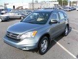 2010 Opal Sage Metallic Honda CR-V LX #23578940