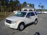 2009 White Suede Ford Escape XLT V6 #23659015