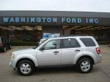 2009 Brilliant Silver Metallic Ford Escape XLT V6 4WD #23654405