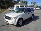 2009 White Suede Ford Escape XLT V6 #23659016