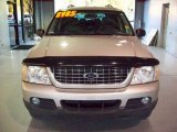 2003 Silver Birch Metallic Ford Explorer XLT #23778341