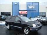 2003 Black Obsidian Hyundai Santa Fe LX 4WD #23848758