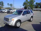 2009 Brilliant Silver Metallic Ford Escape XLT V6 #23857448