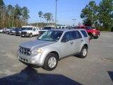 2009 Brilliant Silver Metallic Ford Escape XLT V6 #23857449
