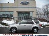 2009 Brilliant Silver Metallic Ford Escape XLT V6 4WD #23905086