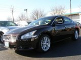 2010 Crimson Black Nissan Maxima 3.5 SV #24184088
