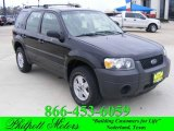 2006 Black Ford Escape XLS #24261949