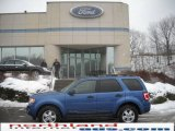 2009 Sport Blue Metallic Ford Escape XLT V6 4WD #24363393