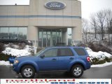 2009 Sport Blue Metallic Ford Escape XLT V6 4WD #24363394