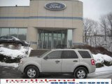 2009 Light Sage Metallic Ford Escape XLT V6 4WD #24363395