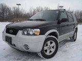 2006 Black Ford Escape Hybrid #24363588