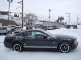 2007 Alloy Metallic Ford Mustang GT Deluxe Coupe #24387626