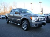 2010 Sterling Grey Metallic Ford F150 XLT SuperCrew #24387808