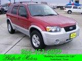 2006 Redfire Metallic Ford Escape Hybrid #24436679