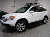 2008 Taffeta White Honda CR-V EX-L 4WD #24436465