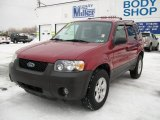2006 Redfire Metallic Ford Escape XLT V6 4WD #24436593