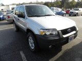 2006 Silver Metallic Ford Escape XLT V6 4WD #24436848