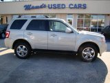 2009 Light Sage Metallic Ford Escape Limited V6 #24493030