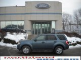 2010 Steel Blue Metallic Ford Escape XLT V6 4WD #24588127