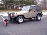 2006 Light Khaki Metallic Jeep Wrangler X 4x4 #24588933