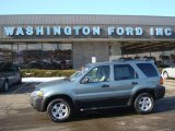 2006 Titanium Green Metallic Ford Escape XLT V6 #24589002