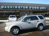 2009 Light Sage Metallic Ford Escape XLT V6 4WD #24589008