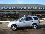 2009 Brilliant Silver Metallic Ford Escape XLT V6 4WD #24589010