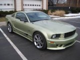 2005 Ford Mustang Saleen S281 Coupe Data, Info and Specs