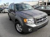 2009 Sterling Grey Metallic Ford Escape XLT V6 #24753400